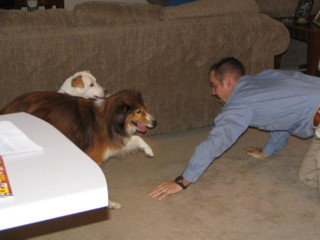 Jason playing with thedogs